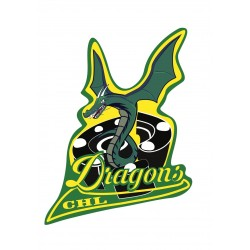 Club de Hockey Dragons